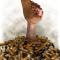 Сигареты – вопросы и ответы